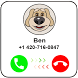 Calling Talking Dog Ben by Fuctorium