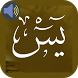 Surah Yasin Audio by Voicez Dev