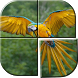 Bird Picture Puzzle Games Free by Apps Volume