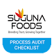 Process Audit Checklist