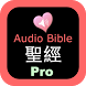 Chinese - English Audio Bible by JaqerSoft