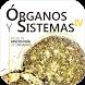 Atlas Interactivo Histología 5 by WeSapiens