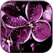 Raindrops on lilac by Creative work
