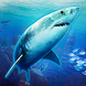 VR Abyss: Sharks & Sea Worlds HD
