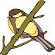 Chirpy Birdy – Free by Vineyard Studio