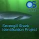 Sevengill Shark Observer by Michael Bear