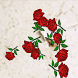 Rose LWP by neoTrx Gamedesign
