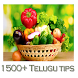 1500+ Telugu Tips by Smart Droidies