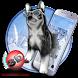 3D Cute Husky Theme