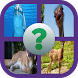 Animal Quiz Game by Sinqwah