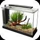 Aquarium Design Ideas by Firlian