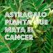 Tratamiento para El Cancer by Myrardimao
