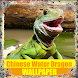 Chinese Water Dragon Reptile Wallpaper by Tirtayasa Wallpaper