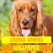 Cocker Spaniel Dog Wallpaper by Tirtayasa Wallpaper