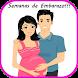 Semanas de Embarazo by PureLife Inc.