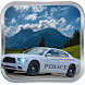 3D Police Car Racer by Regex publishers