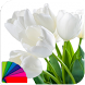 Theme for Xperia - Tulips by Theo Room Studio