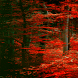Red Tree Live Wallpaper by Daksh Apps