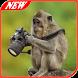 Cerita Binatang Bahasa Inggris by AyahMamah Apps