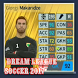 Guide for Dream League Soccer 2017