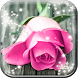Pink Rose Live Wallpaper HD by Cute Princess Apps