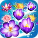 Blossom Crush Legend by Sense Game