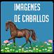 Imagenes de caballos by Holmapps