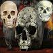 Skull and Skull Wallpapers by Starsapps