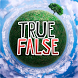 True or False by Kristina Game