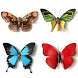 Butterfly Memory by Funny Addicting Games
