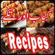 Kabab aur Tikkay Recipes New by Logic Box Labs