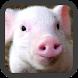 Little Pig wallpaper by Peanut