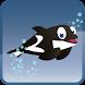 Splashy Dolphin by Nguyen Cuong