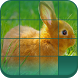 Photo Puzzle by L2 APPS