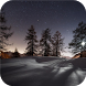 Winter forest landscapes by Live Wallpapers UA