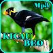 Kicau Burung Beo Gacor Mp3 by iky94 studio