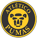Atletico Pumas - GTI by Tiago Werenicz Schneider