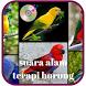 Suara Alam Terapi Burung by appindo
