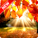 Autumn Wallpaper by Pinza