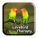 Terapi Lovebird by AD Apps