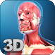 My Muscle Anatomy by visual 3d science