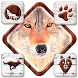 Gentle Wolf Theme by Launcher