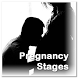 Pregnancy Stages by Zyan App