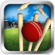 Cricket Run Out 3D by AbsoLogix - 3D Games Studio