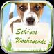 Schönes Wochenende by World of apps