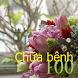 100 Chữa bệnh by KenMac Holdings Limited