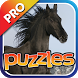 Horse Puzzles Pro by Mokool Inc