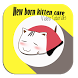 Newborn Kitten Care Guides