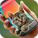 cat inside phone