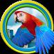 Flappy Parrot by Ilya Yashin